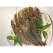 馬來西亞~白蝦700g