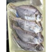 野生肉魚(6-8隻)
